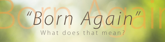 Are You Born Again?